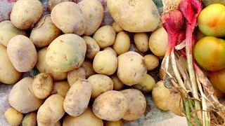 Gambar cover How to Make Alu Pora Recipe by Santali People | Potato Recipe - Indian Village Food