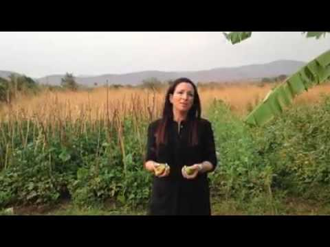 Juggling Mazuku Fruit in Zambia with UNICEF