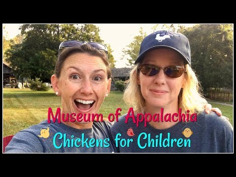Chickens for Children~Museum of Appalachia