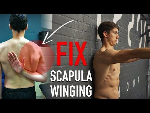 Fix Scapula Winging (FULL ROUTINE)