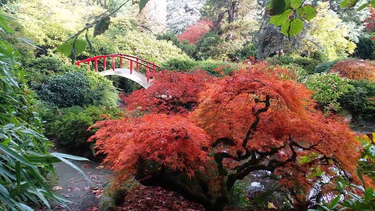 Kubota Garden In Seattle