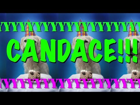 happy-birthday-candace!---epic-happy-birthday-song