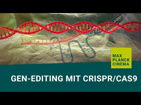 Gen-editing mit CRISPR/Cas9 (english subtitles)