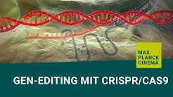 Gen-editing mit CRISPR/Cas9 (english subtitles)