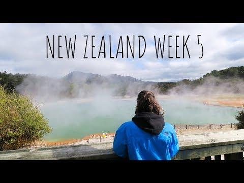 WEEK5   ROTORUA & LAKE TAUPO   NEW ZEALAND