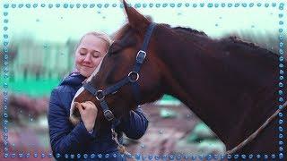 VLOG: Тискаю других лошадей по вызову | Изменяю МЕДЕЕ!?