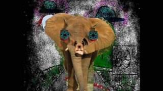 Mitä? - Hitlermodattu kyborgifuusiovaltatie-elefantti (Avaruusninja cover)