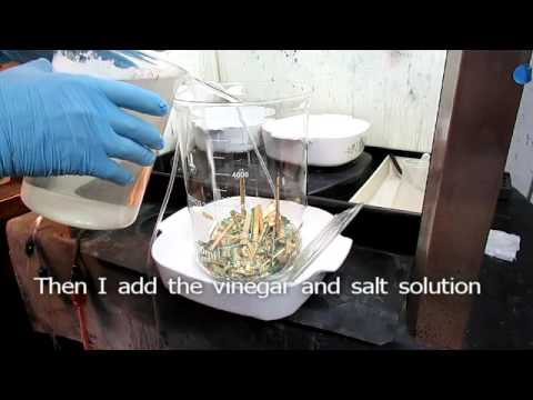 How To Recover Gold From Computer Scrap With Salt And Vinegar 1of3