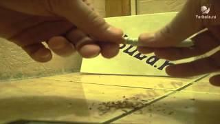 Как починить сломанную сигарету