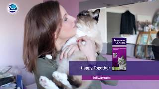 How stop your cat spraying?