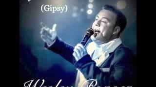 Wesley Ponsen - Jij liet me vallen (Gipsy)