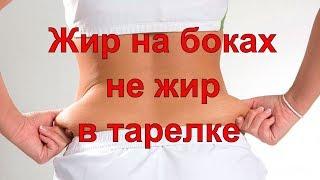Жир на боках — не жир в тарелке | Елена Бахтина