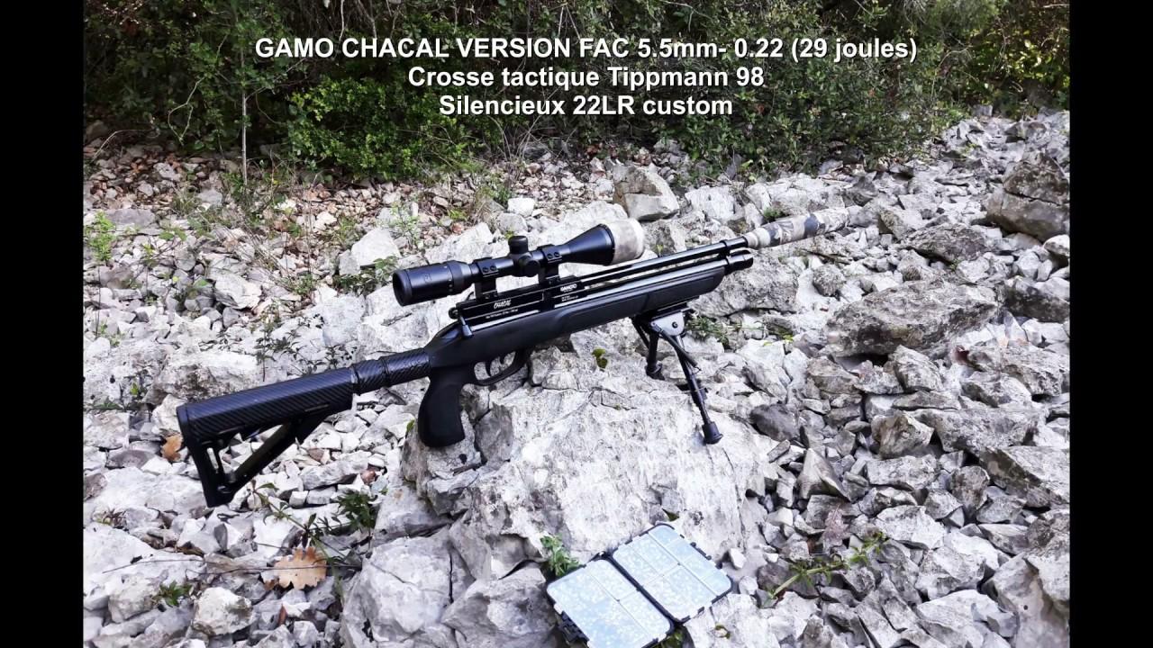 Test GAMO Chacal 40 mètres PHOX - URBAN RIFLE AIRGUN