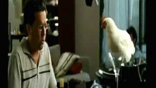 Hangover1 What Do Tigers Dream Of Song