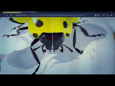 Xbox One X: Project Scorpio early tech demo of  Insects: An interactive Ultra HD, HDR experience
