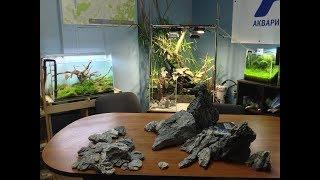 Аквариумпермь.рф - №1/2 Выставка в нашем офисе на 18 аквариумов(Вабикса, Паллюдариум,Вивариумы)