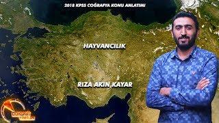 KPSS  2018 COĞRAFYA  TÜRKİYE'DE  HAYVANCILIK