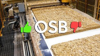 Could OSB be BETTER than Plywood????