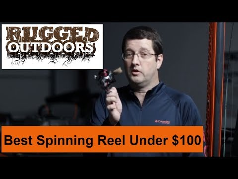 Best Spinning Reel Under $100 - Pflueger President XT Spinning Reel