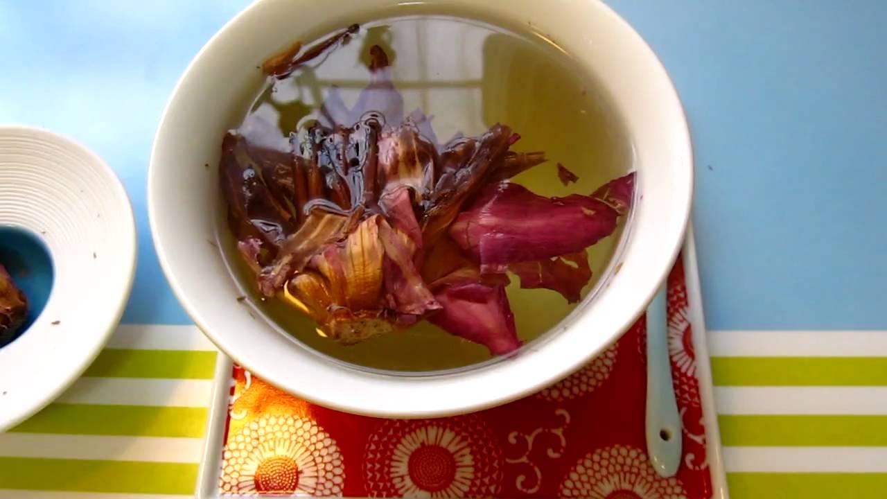 Lotus Tea 01 The Pretty Flower Youtube