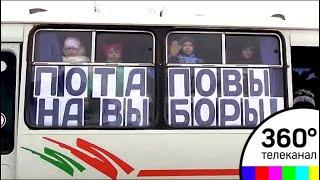 «Потаповы  на выборы!» Семья из 30 человек проголосовала в Волгоградской области