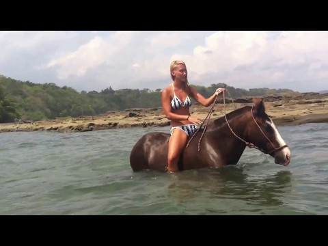 Horseback Riding Costa Rica - JACO & Manuel Antonio Beach (swim with horses)