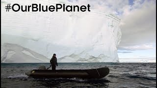 Explore Antarctica With A Top Expedition Leader #OurBluePlanet – BBC Earth