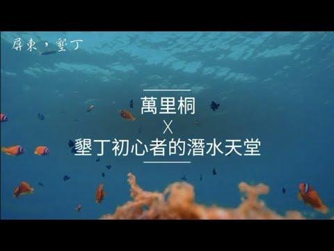 墾丁初心者的潛水天堂-萬里桐|自由潛水|攻略|Vlog46