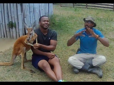Hidden Zoo in Trinidad