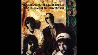 Traveling Wilburys - The Devil's Been Busy - Vinyl recording HD