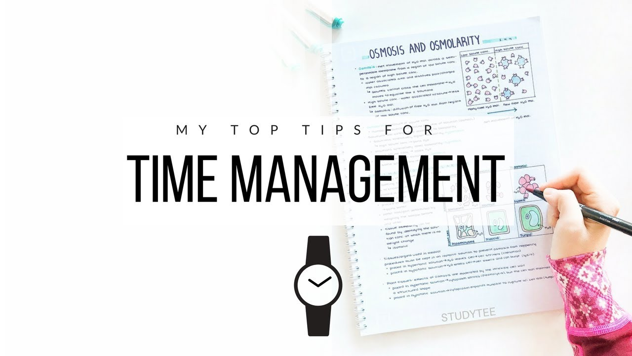 Download How I manage my time ⏰ 10 tips for time management   studytee