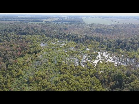 West Tennessee Duck Hunting Property For Sale