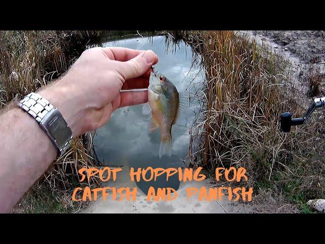 Spot Hopping for Catfish and Panfish