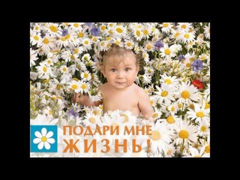 Мое слайд-шоу Дети Наши Цветы