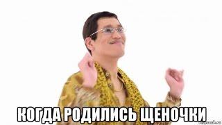 Такса родила щеночков №1