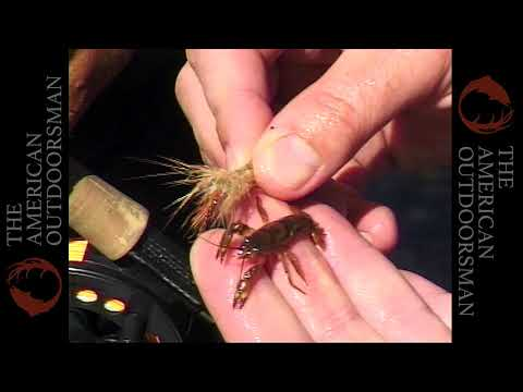 Fly Fishing The White River