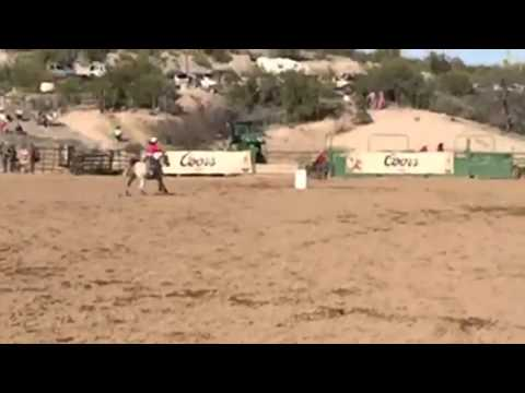Wickenberg rodeo 2015