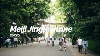 Meiji Jingu Shrine,Tokyo | Japan Travel Guide