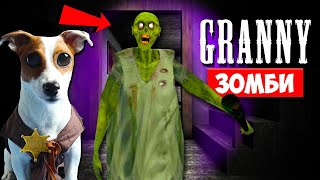 ► СОБАКА ИГРАЕТ В GRANNY ►МОД ГРЕННИ ЗОМБИ ► Dog playing in Zombie Granny