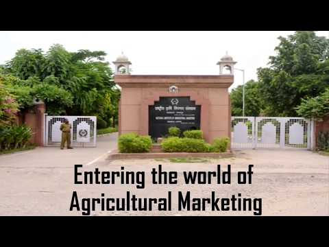 CCS NATIONAL INSTITUTE OF AGRICULTURAL MARKETING,  AN EXPEDITION FROM  08-08-88 TO 08-08-18