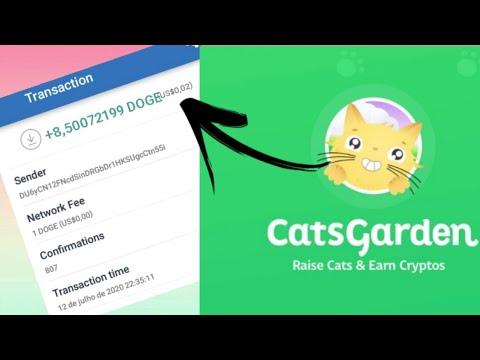 Ganhar bitcoins assistindo videos for cats virginia sports betting bill