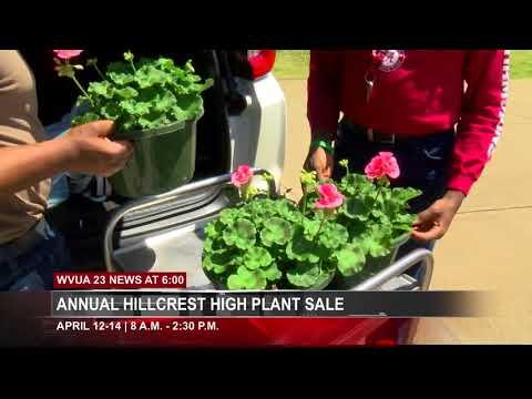 HILLCREST HIGH SCHOOL ANNUAL PLANT SALE