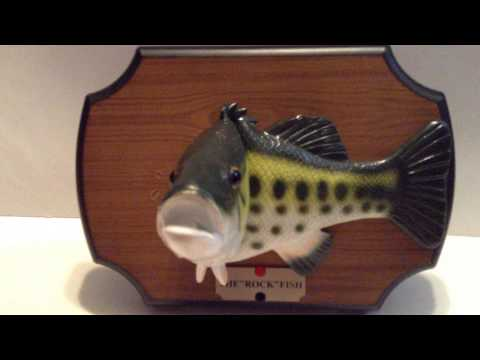 Singing and dancing animated 39 39 the rock fish 39 39 singing for Talking fish toy