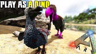 THE TERROR BIRD STRUGGLE   PLAY AS A DINO   ARK SURVIVAL EVOLVED