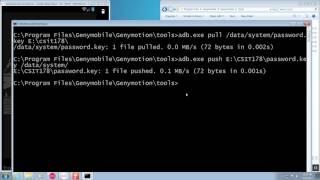 cSIT 178 Using Genymotion ADB shell commands