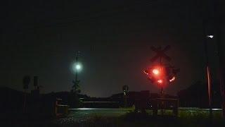 不気味でもあり、美しくもある。夜の踏切いろいろ。12箇所。 thumbnail