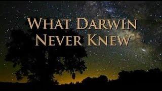 What Darwin Never Knew NOVA HD