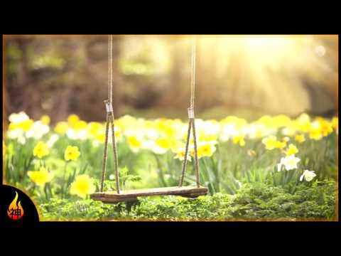 1 Hour Bright Instrumental Music   In The Garden   Relax, Study, Ambience