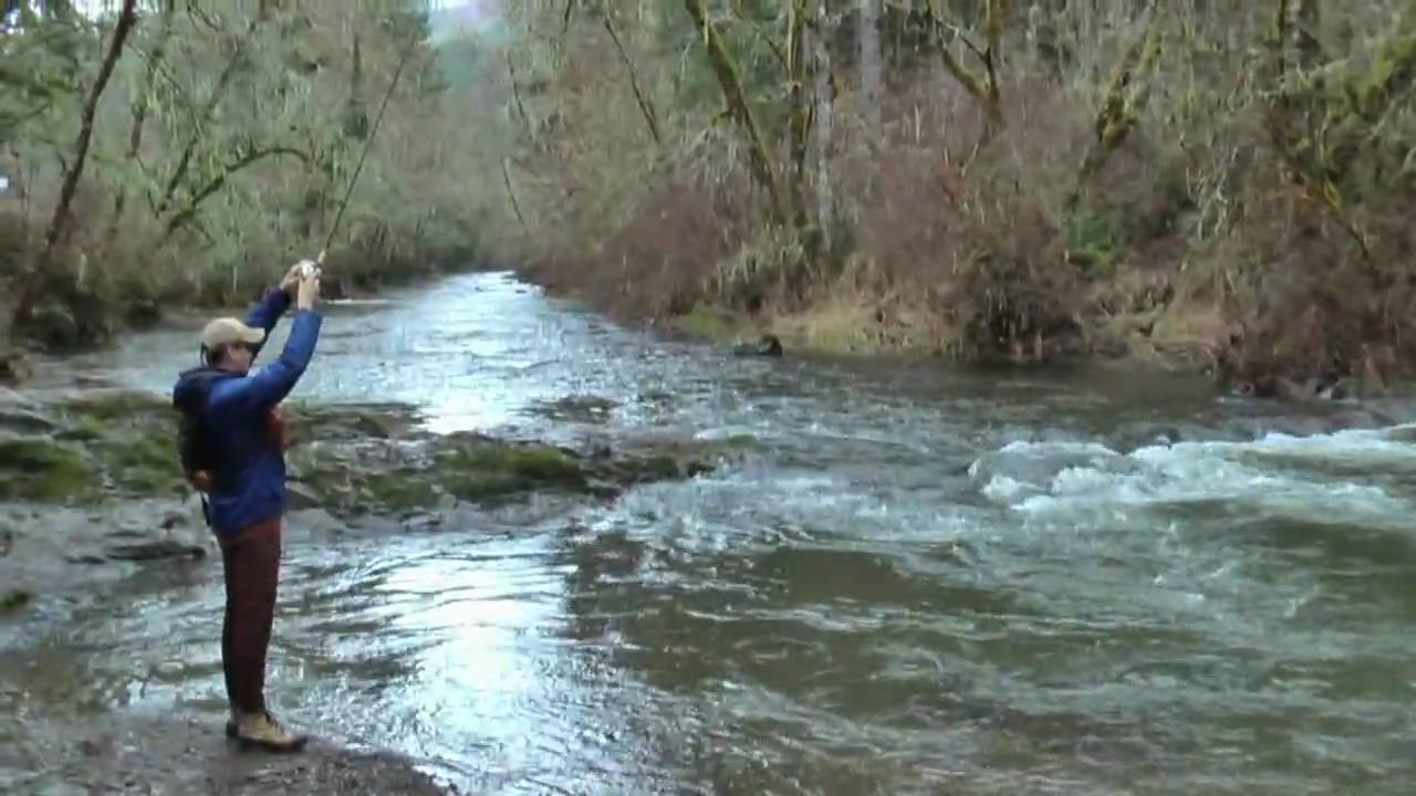 Steelhead fishing at north fork alsea oregon youtube for Where to buy oregon fishing license