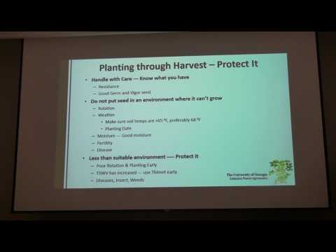 Timely Advice for Peanut Growers